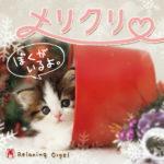 α波オルゴール〜メリクリ・ぼくがいるよ。 クリスマスソング クリスマス CD ヒーリング ミュージック BGM 音楽 癒し 不眠 睡眠 寝かしつけ リラックス 結婚式 記念日 卒業式 お祝い クリスマス ギフト プレゼント (試聴できます)送料無料 曲 イージーリスニング