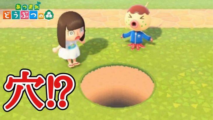 【あつ森】巨大な穴が出現!?【あつまれどうぶつの森】