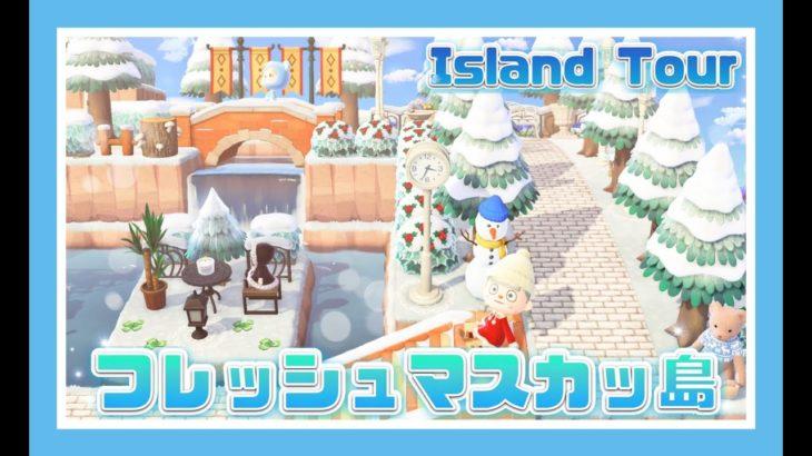島紹介~2020年最後のフレッシュマスカッ島~【あつまれどうぶつの森】【Animal Crossing】【女性ゲーム実況者】【TAMAchan】