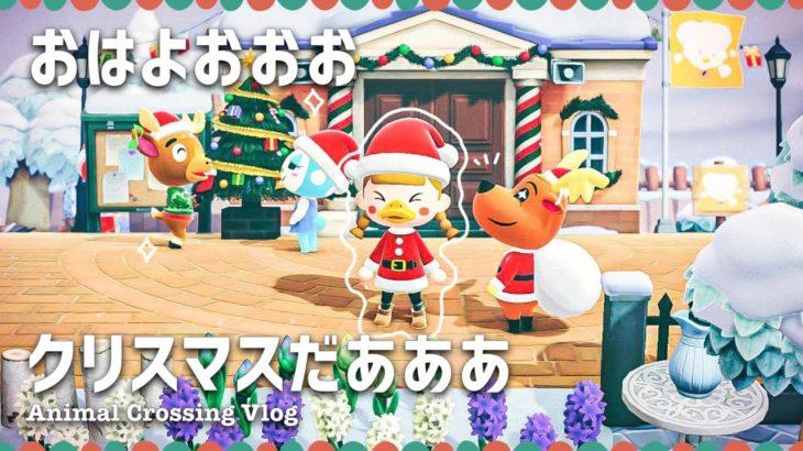【あつ森】クリスマスだあああ【ライブ   あつまれどうぶつの森】