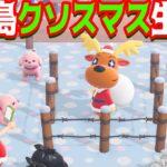 【生放送】罪人島のクリスマス(クソスマス)【あつまれどうぶつの森】
