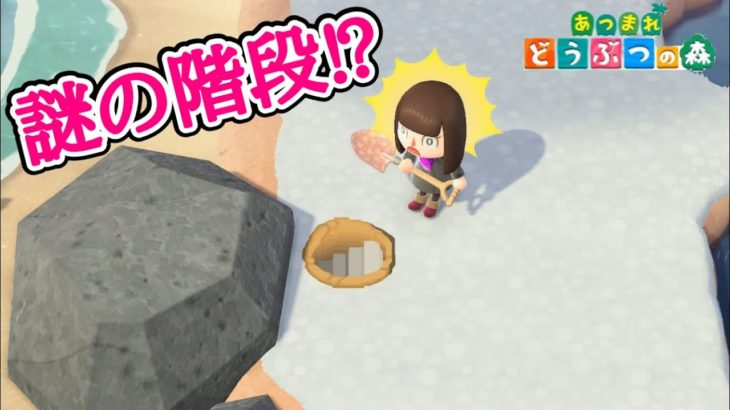 【あつ森】穴を掘ったら階段が!?【あつまれどうぶつの森】