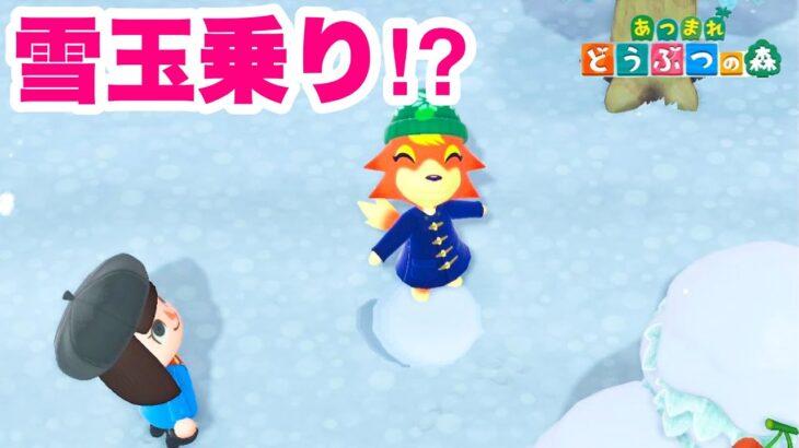 【あつ森】雪玉に乗れちゃった!?【あつまれどうぶつの森】