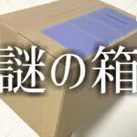 【あつ森】あれ?まさかこの箱は…?【あつまれどうぶつの森】