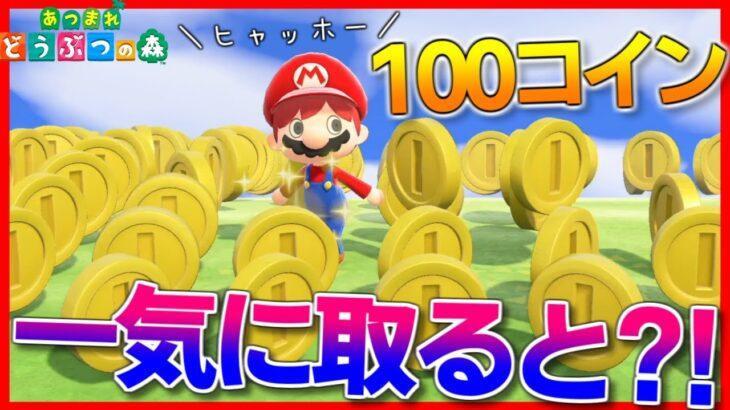 【あつ森】コイン100枚を一気に取ったら1UPするんじゃね?【あつまれどうぶつの森】【検証】