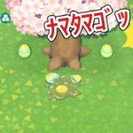 【あつ森】卵割れちゃってる!!!【あつまれどうぶつの森】