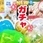 すみっコぐらし 最新ガチャ♪ステンドグラスチャーム&カプセルテラリウム Capsule Toy 角落生物 fromegg