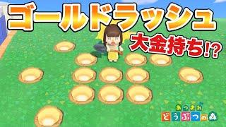 【あつ森】金の穴が大量出現!?テンション上がるーーー!!!【あつまれどうぶつの森】
