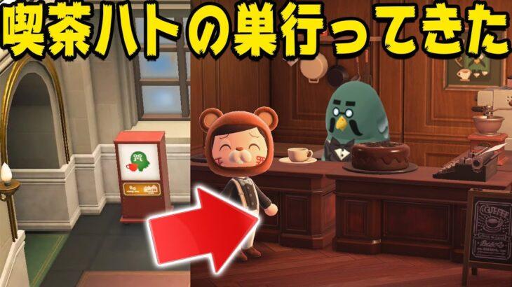 【先取り】罪人島に喫茶ハトの巣が完成!行くぞー!!【あつまれどうぶつの森】
